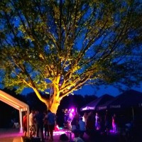 Ambiente Ochsenfest 2015
